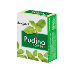 Banjaras Pudina Powder